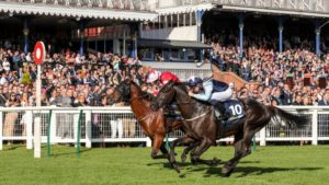 What is the Ayr Gold Cup?