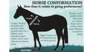 Do horses still race on hard going?