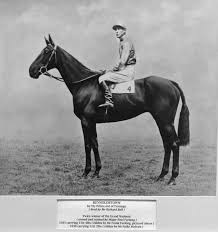 Before Tiger Roll and Red Rum, which was the last horse to win the Grand National two years running?
