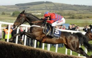 Aside from Arkle & Flyingbolt, which was the highest rated steeplechaser in history?