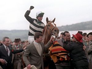 Which was the longest-priced winner in the history of the Cheltenham Festival?