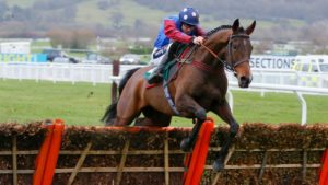 Which is the oldest of the 'championship' races run at the Cheltenham Festival?
