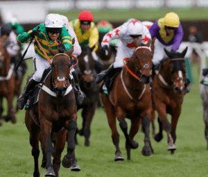 How many horses have won the Champion Hurdle more than once?