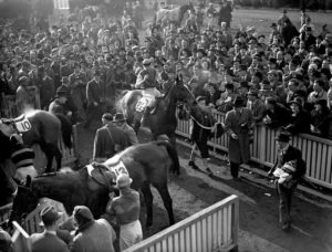In which year was the Cheltenham Gold Cup first televised?