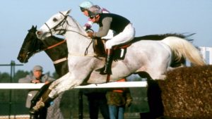 Did Desert Orchid ever start favourite for the Champion Hurdle?