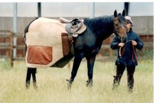 What is a Monty Roberts blanket?