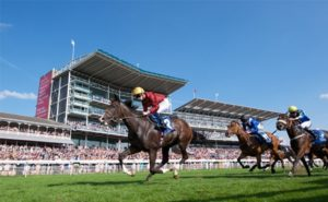 Which England county has most racecourses?