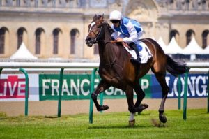 What is flat racing?