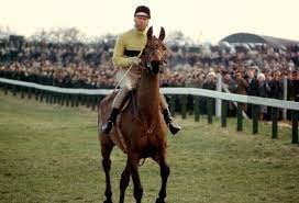 Did Flyingbolt ever beat Arkle?