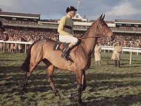 How many Cheltenham Festival races are named after horses?