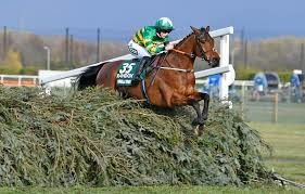 Which horse is favourite for the 2022 Grand National?