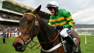 How many mares have won the Champion Hurdle?