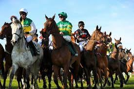 What's the average number of finishers in the Grand National?